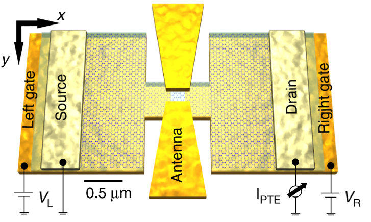 Plasmonic antenna coupling to hyperbolic phonon-polaritons for sensitive and fast mid-infrared photodetection with graphene