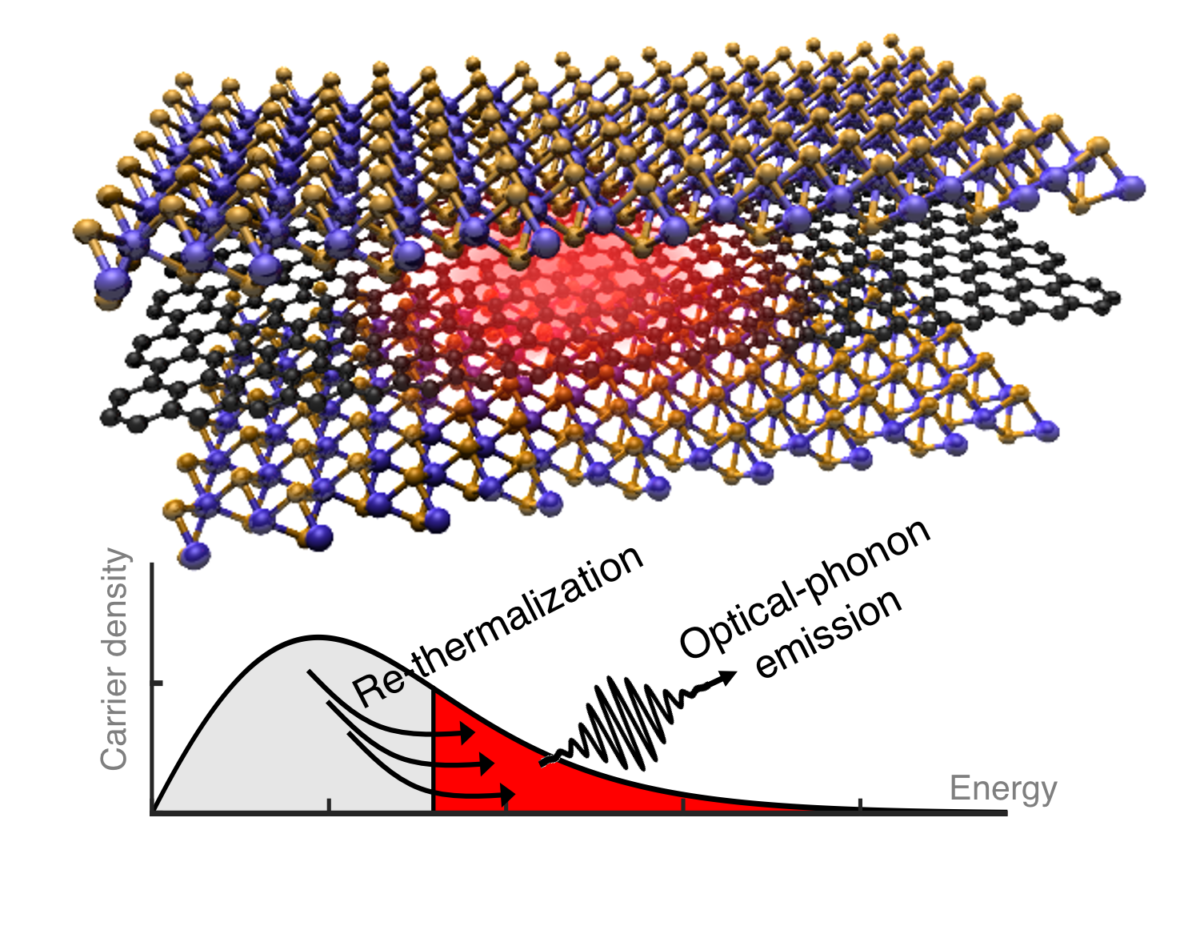 New insights into charge carrier dynamics in graphene-based materials for optoelectronic applications