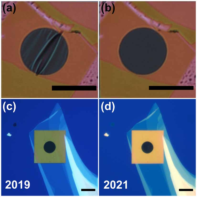 Fabrication and characterization of large-area suspended MoSe2 crystals down to the monolayer